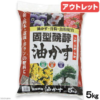 Outlet products Seto month original flower garden solid fermentation seeds 5 kg translation and Kanto day flights