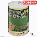 アウトレット品 JガーデングラスDX 温暖地用(西洋芝の種) 1L缶入り(約10平方m) 訳あり 関東当日便