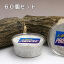 菌糸カップ 大夢B プロスペック (オオヒラタケ) カップ 200cc 60個 関東当日便