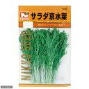 野菜の種 サラダ京水菜 品番:1129 家庭菜園 関東当日便