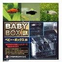 (熱帯魚)ミックス・プラティ(4匹) + ベビーボックス・プ...