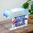 三晃商会 SANKO CLEAN CASE クリーンケース(M)(305×195×232mm) プラケース 虫かご 飼育容器 関東当日便