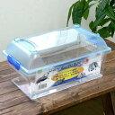 三晃商会 SANKO CLEAN CASE FLAT クリーンケースフラット(L)(375×220×184mm)プラケース 虫かご飼育容器 関東当日便