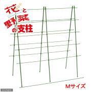 簡易梱包 緑のカーテン 花と野菜の支柱 M(W70×H90cm) 関東当日便