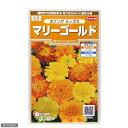 花壇に!コンテナに!花の種 ボナンザ ミックス マリーゴールド 品番:906−7109 【あす楽対応_関東】