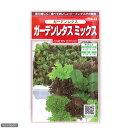 見て美しく、食べておいしい!野菜の種 ガーデンレタスミックス 品番:923−676 【あす楽対応_関東】