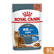 ロイヤルカナン FHN−WET ウルトラライト 成猫用 85g 正規品 9003579308769 お一人様5点限り 関東当日便