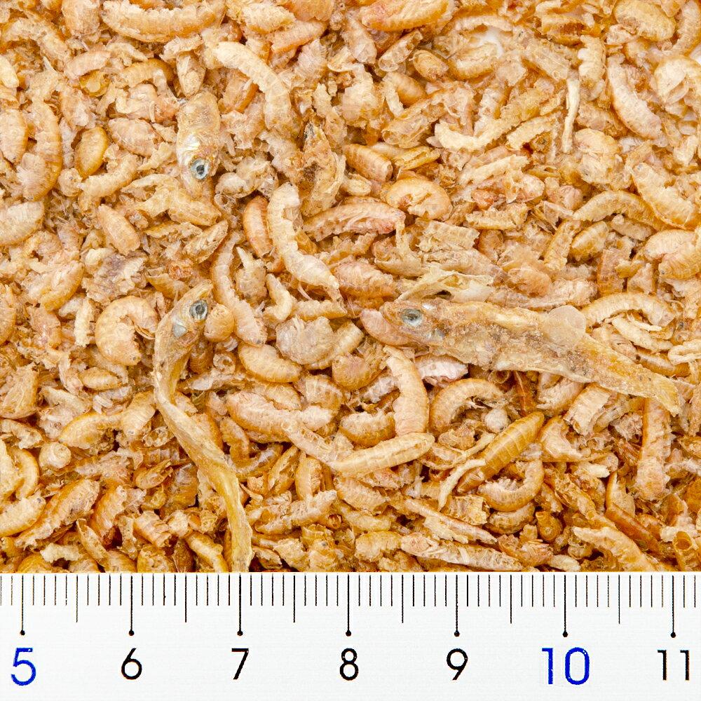セラ ラフィI 250ml (35g) 爬虫類...の紹介画像2