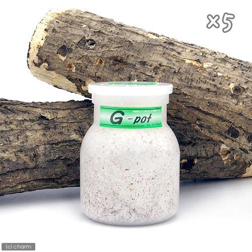 菌糸ビン G-pot 550cc 5本 関東当日便の商品画像