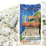 水槽の底砂 サンゴ砂 2.4kg 関東当日便
