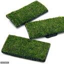 (水草)巻きたて 特選竹炭 板状 ジャイアント南米ウィローモス付(無農薬)(1枚)