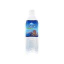 ペットの天然水 Vウォーター 500ml 犬 ペットウォーター ドリンク 関東当日便