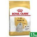ロイヤルカナン マルチーズ 成犬・高齢犬用 1.5kg 関東当日便