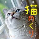 【2017年カレンダー】猫めくり【あす楽】