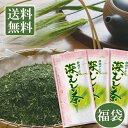 <お茶の1000円福袋>採算度外視メール便送料無料(お茶 日...