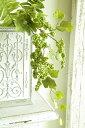 造花 インテリアグリーン 観葉植物 フェイクグリーン【造花 ワイルドグレープベリー グリーン】