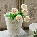 植木鉢 鉢 かわいい 可愛い フレンチスタイル ナチュラル アンティーク風 寄せ植え オリーブ プランター 白系 8号 Φ24.5×H24.5