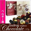 ガドラン ベルギー産 ムースチョコレート 520gGUDRUN Bag and Assorted Chocolateバッグ アンド チョコレートチョコ ベルギーチョコ ギフト グドラン バレンタイン