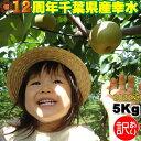 幸水 5kg【訳あり】【2L】こうすい 梨 5キロ 集荷量で...