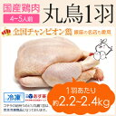 丸鶏 (丸鳥) 1羽 【冷凍 大サイズ】国産鶏肉 紀州うめどり 中抜き 約2.4kg 鶏肉 ( 鶏