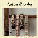 2cm幅カラー(犬用首輪)AutumnBorder【オーダー...