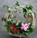 【送料無料】かわいらしいジュリアンと冬咲きクレマチスのクレセント型リース 冬の寄せ植え 35cmサイズ