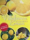 ビアフランカレモン(檸檬) 果樹 5号苗(d6)