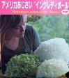 ショッピングアジサイ 紫陽花(アジサイ) インクレディボール 3.5号ポット