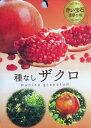 種無し柘榴(タネナシザクロ) 5号苗(d2)
