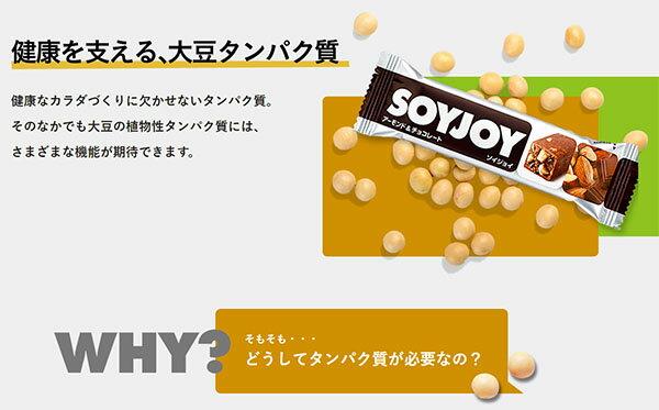 大塚製薬 SOYJOY(ソイジョイ)3種のレー...の紹介画像3