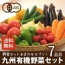 有機野菜セット おまかせ7品目 九州産 鹿児島県 有機栽培 ...