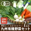 野菜セット 有機野菜おまかせセブン 九州野菜 鹿児島
