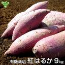 紅はるか 9kg 有機栽培 鹿児島県産 宮崎県産 土付き さつまいも 薩摩芋 サツマイモ か