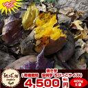 冷凍焼き芋【送料無料】安納芋 400g×5袋 種子島産 有機栽培の安納芋で作った焼き芋