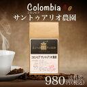 【コロンビア】サントゥアリオ農園180g(珈琲 珈琲豆 コーヒー コーヒー豆 サードウェーブコーヒー シングルオリジン)※こちらは豆でのお届けとなります。