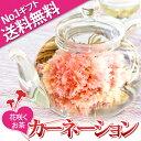 誕生日 内祝い お中元 工芸茶10種とガラスのティーポット ギフト 優雅セット 送料無料
