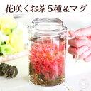 【いやしセット】 ギフト カーネーション 花咲く 工芸茶 花茶5種と耐熱ガラス マグカップ 実用的 フラワープレゼント ジャスミン茶 紅茶