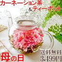 送料無料 ティーポット お花のつぼみ カーネーション茶 工芸茶 母の日 ギフト 2018