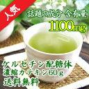 ケルセチン配糖体濃縮カテキン60g 送料無料 ダイエット ダイエットドリンク 緑茶 カテキン配合 健康茶健康ドリンク