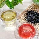 ショッピング自由研究 赤い日本茶・サンルージュ50g 色が変わる 国産 緑茶