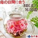 母の日ギフト まだ間に合う お花のつぼみとティーポット 送料無料 カーネーション茶 母の日プレゼント 工芸茶 花 花…