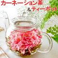 お花のつぼみとティーポット 送料無料 カーネーション茶 誕生日 バースデー 女性 プレゼント 工芸茶...