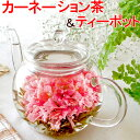 送料無料 お花のつぼみとティーポット カーネーション茶 誕生日 バースデー 女性 プレゼント 工芸茶...