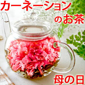 お花のつぼみ&カラーティー・ティーポット あす楽対応 母の日ギフト 誕生日 工芸茶 カーネーション茶