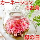 母の日ギフト お花のつぼみとティーポット 誕生日 女性 バースデー お茶 花 あす楽 カーネーション茶