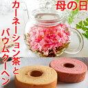 お花のつぼみとバウムクーヘン送料無料 カーネーション茶母の日ネコポス 誕生日 女性 プレゼント ティーセット