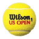 【在庫品】 ウイルソン US OPEN Jumbo Ball ジャンボ・ボール wrx2096 テニスボール