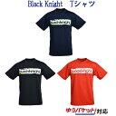 最大400円OFFクーポン付 ブラックナイト BK Tシャツ T-9130 メンズ ユニセックス
