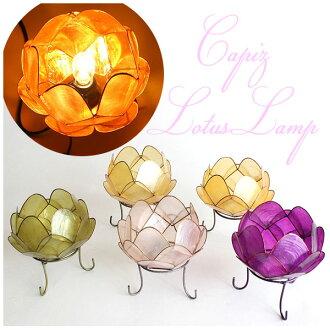 卡皮斯蓮花 lamp-(li) 航運成本 490 日元從啟亞洲間接照明檯燈 Tomo
