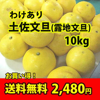 ◆ not and ◆ Tosa Buntan ( roji Pummelos ) ★ your home probably Tan is the economical 10 kg (M size) small size. And ball number みはからい ★? s cheap 2480 yen.""